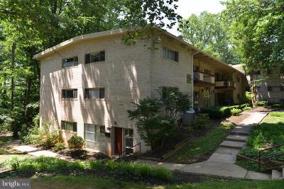 Annandale, Falls Church Condo For Sale: 4375 Americana Drive