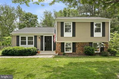 Herndon Single Family Home For Sale: 12625 Pinecrest Road