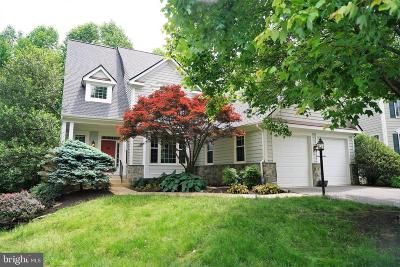 Fairfax County Single Family Home For Sale: 11401 Northwind Court