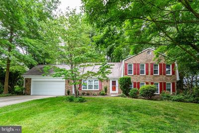 Fairfax County Single Family Home For Sale: 10209 Martinhoe Drive