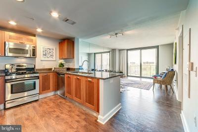 Alexandria Single Family Home For Sale: 2451 Midtown Avenue #1012