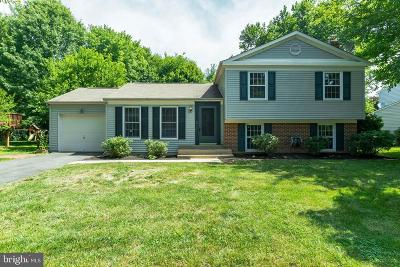 Herndon Single Family Home For Sale: 12622 Holkein Drive