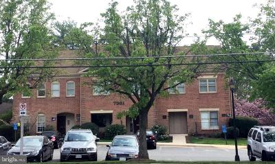 Annandale, Falls Church Condo For Sale: 7361 McWhorter Place #300