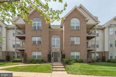Fairfax, Fairfax Station Condo For Sale: 4108 Monument Court #204