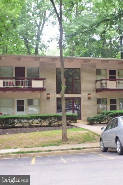 Annandale, Falls Church Condo For Sale: 7722 Donnybrook Court #207