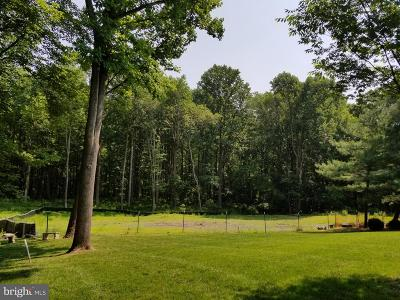 Herndon Residential Lots & Land For Sale: 12504 Northern Valley Court