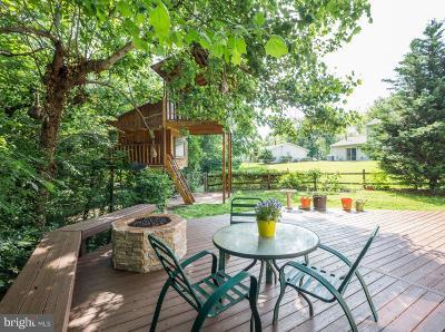 Fairfax Single Family Home For Sale: 12910 Mount Royal Lane