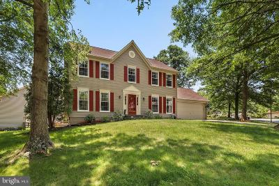 Herndon Single Family Home For Sale: 3123 Nestlewood Drive