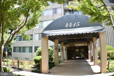 Annandale, Falls Church Condo For Sale: 4415 Briarwood Court N #41
