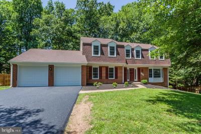 Reston Single Family Home For Sale: 2604 Mountain Laurel Place