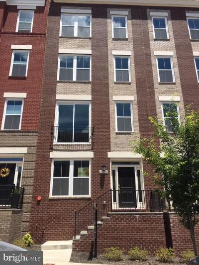 Reston Townhouse For Sale: Sunrise Square Place #18