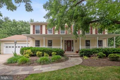 Reston Single Family Home For Sale: 12604 Noble Victory Lane