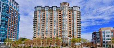 McLean Condo For Sale: 8220 Crestwood Heights Drive #715
