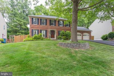 Fairfax County, Fairfax City Single Family Home For Sale: 12036 Sugarland Valley Drive