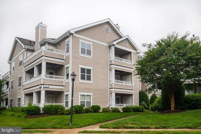 Fairfax County Condo For Sale: 14302 Rosy Lane #32