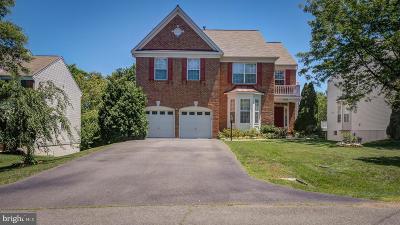 Falls Church Single Family Home For Sale: 6306 Buffalo Ridge Road
