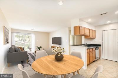 Reston Condo For Sale: 1710 Abercromby Court #B