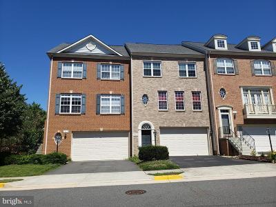 Fairfax Rental For Rent: 12681 Heron Ridge Drive
