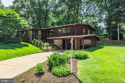 Falls Church Single Family Home For Sale: 3018 Pine Spring Road