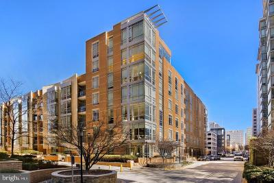Reston Rental For Rent: 12025 New Dominion Parkway #310