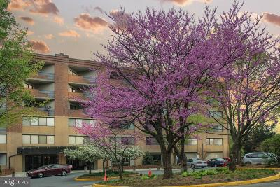 Fairfax County Condo Active Under Contract: 1951 Sagewood Lane #509