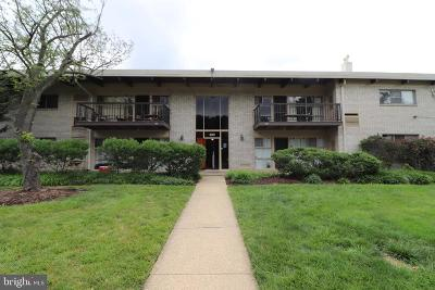 Fairfax County Condo For Sale: 4961 Americana Drive #H