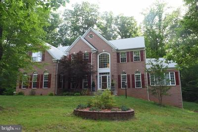 Annandale, Falls Church Single Family Home For Sale: 6649 Tansey Drive