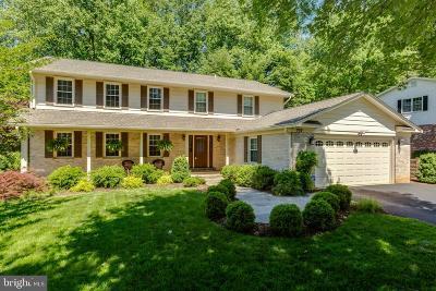 Fairfax County Single Family Home For Sale: 737 Ridge Drive
