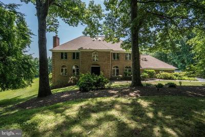 Great Falls Single Family Home For Sale: 9193 Ripple Brook Road