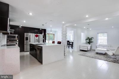 Fairfax County Single Family Home For Sale: 4608 Randolph Drive
