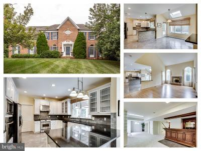 Reston Single Family Home For Sale: 10790 Hunt Club Drive