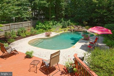 Oakton Single Family Home For Sale: 11401 Lakin Place