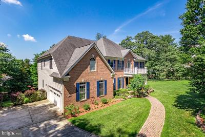 Fairfax County, Loudoun County Rental For Rent: 8475 Wolftrap Road