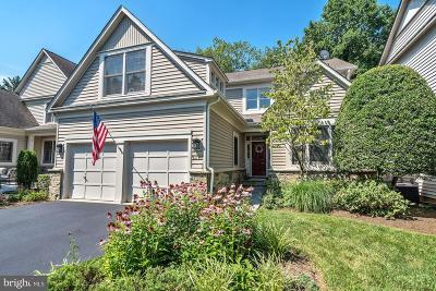 Reston Single Family Home For Sale: 1312 Red Hawk Circle