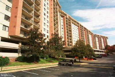 Falls Church Condo For Sale: 3800 Powell Lane #CU-1