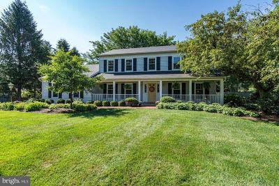 Reston, Herndon Single Family Home For Sale: 13523 Copper Bed Road