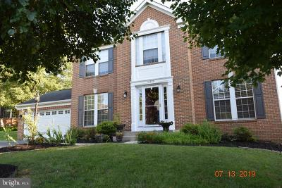 Centreville Single Family Home For Sale: 14355 Maple Rock Court