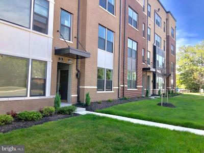Fairfax County Condo For Sale: 212 Van Buren Street #26