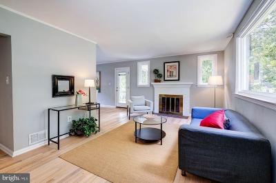 Annandale, Falls Church Single Family Home For Sale: 7019 Aronow Drive