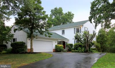 Herndon Single Family Home For Sale: 1140 Bandy Run Road