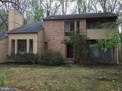 Vienna Single Family Home For Sale: 1409 Wolftrap Run Road