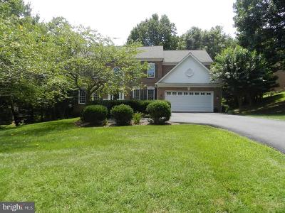 Fairfax County Single Family Home For Sale: 11731 Saddle Crescent Circle