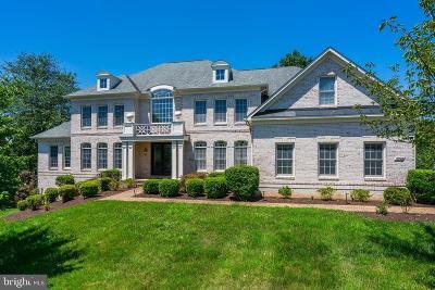Oakton Single Family Home For Sale: 2924 Fox Mill Manor Drive