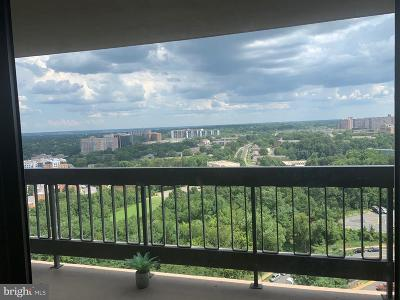 Falls Church Condo For Sale: 3705 S George Mason Drive #2009S