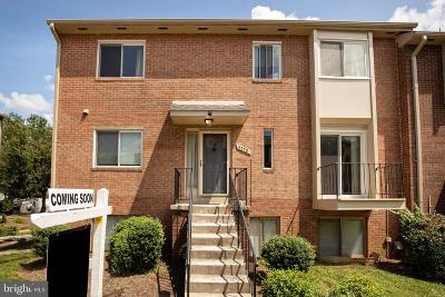 Annandale Condo For Sale: 4578 Conwell Drive #167
