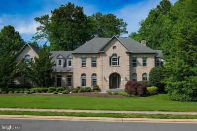 Reston, Herndon Single Family Home For Sale: 1129 Round Pebble Lane