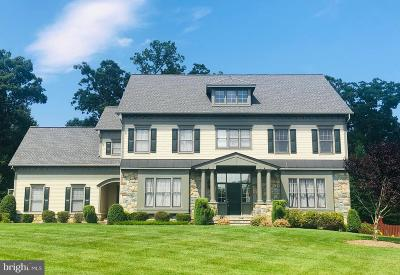 Lorton Single Family Home For Sale: 9520 Peniwill Drive