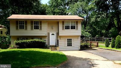 Burke, Fairfax City Single Family Home For Sale: 6100 Winter Park Drive