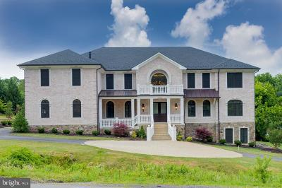 McLean Single Family Home For Sale: 7112 Georgetown Pike