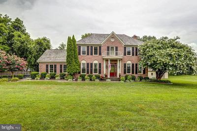 Lorton Single Family Home For Sale: 8813 Hampton Station Court